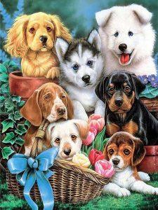 Diamond painting puppy's