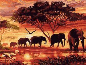 Diamond painting olifanten safari
